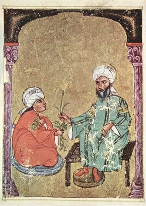 Arabischer_Maler_des_Kräuterbuchs_des_Dioskurides_004