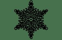Flocon 2 N-1
