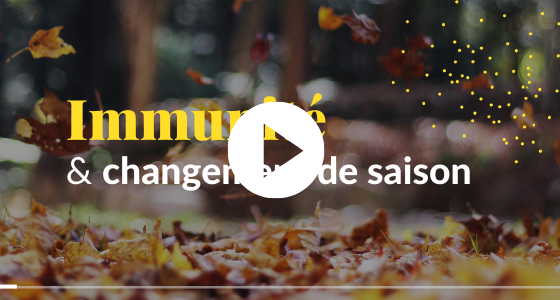 IMG_vidéo_blog_ch. saison