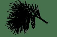 Pin N-1